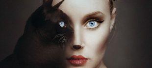 Hayvan ve İnsan Gözü Birleşmesi Mükemmel Fotoğraf Çalışması